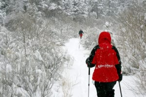 Red Jacket Snowshoe - Dreamstime