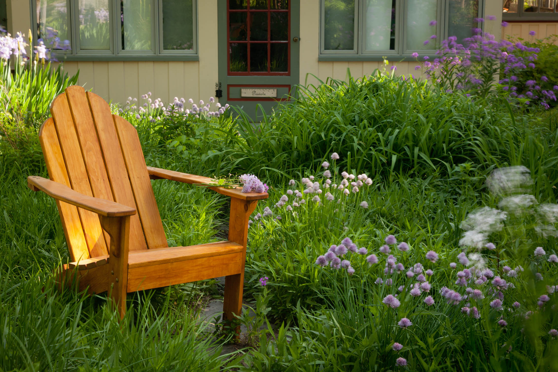 A chair in the garden