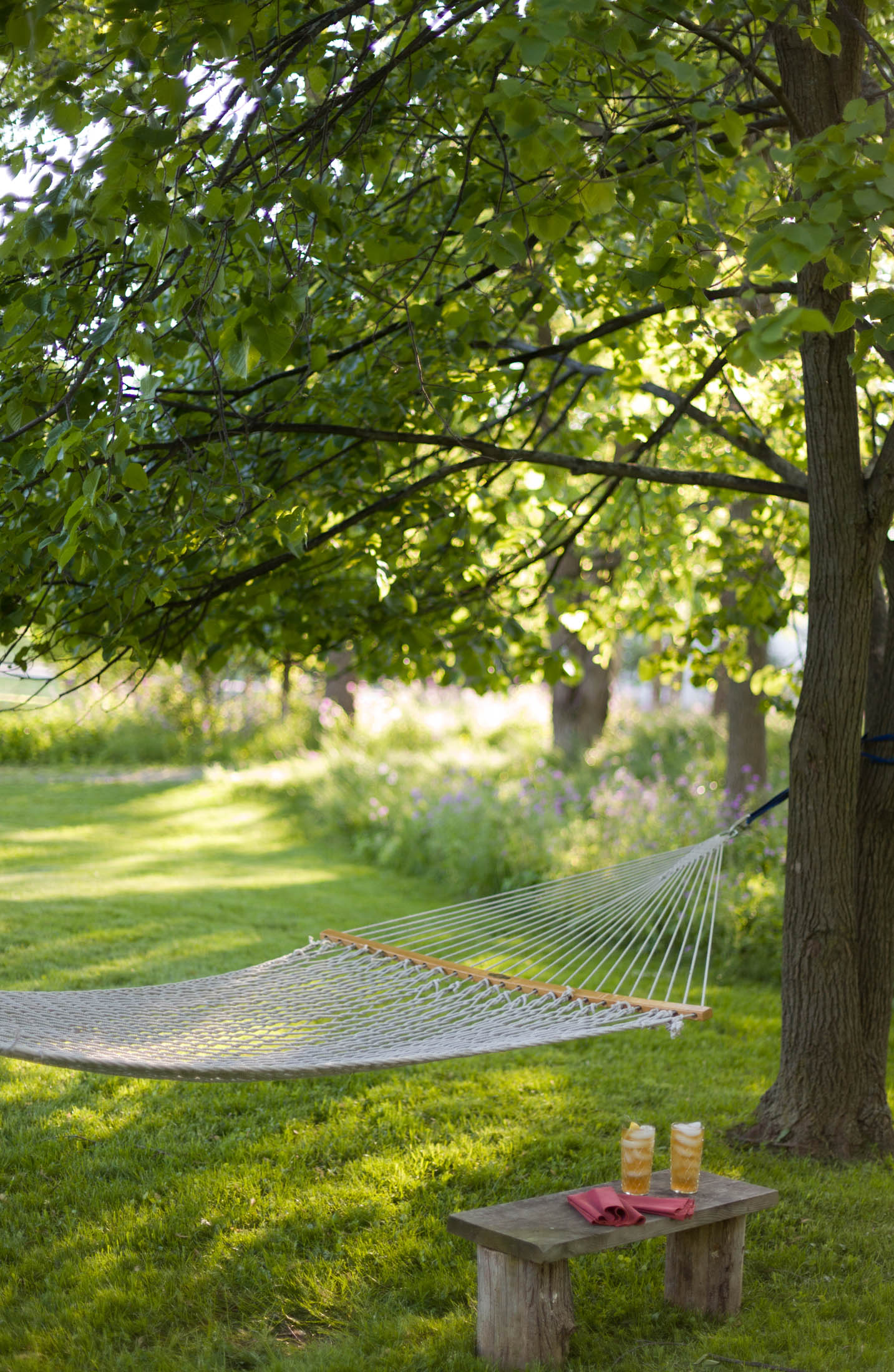 Hammock in the back yard at Gothic Eves