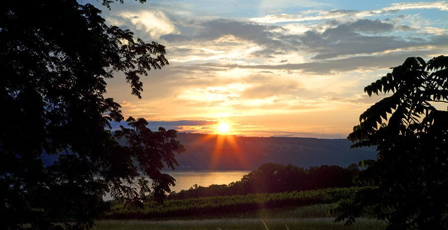 Visit a Finger Lakes Distillery When you Stay at our Bed and Breakfast